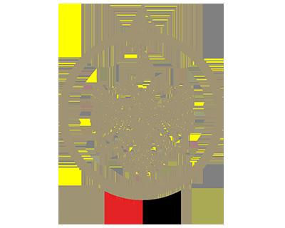 Albania customs emblem